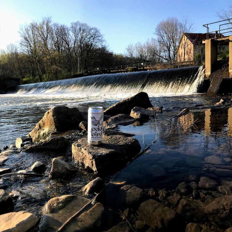 Odd Bird Brewery River Stockton New Jersey